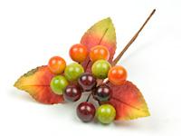 Autumn-Berry-Pick-14.jpg