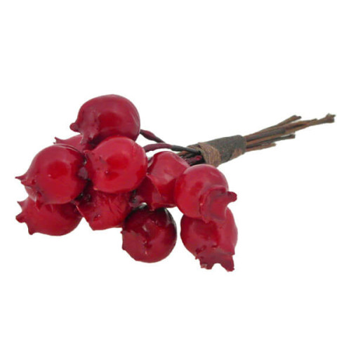 Red-berry-pick