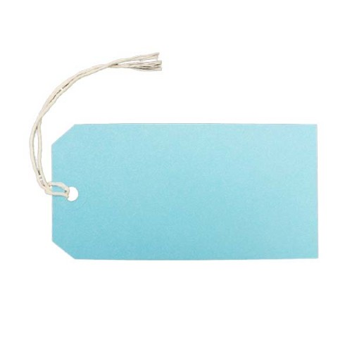Blue-Parcel-Label-Strung-Tag