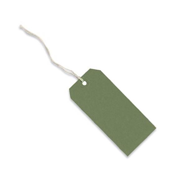 Green Strung Parcel Tag