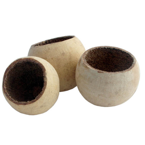 Natural Bell Cups