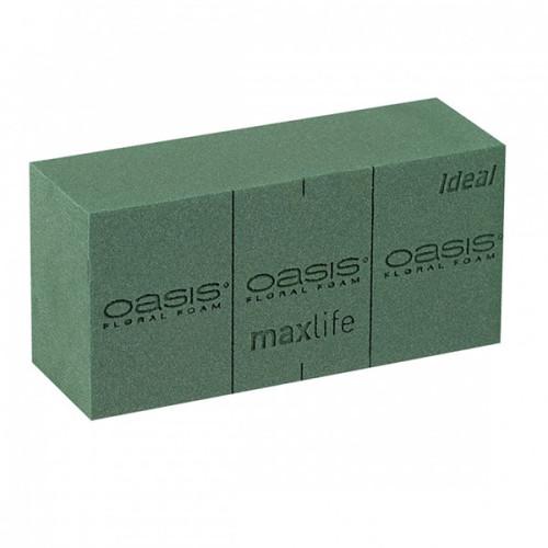 Oasis Wet Foam Brick   The Essentials Company