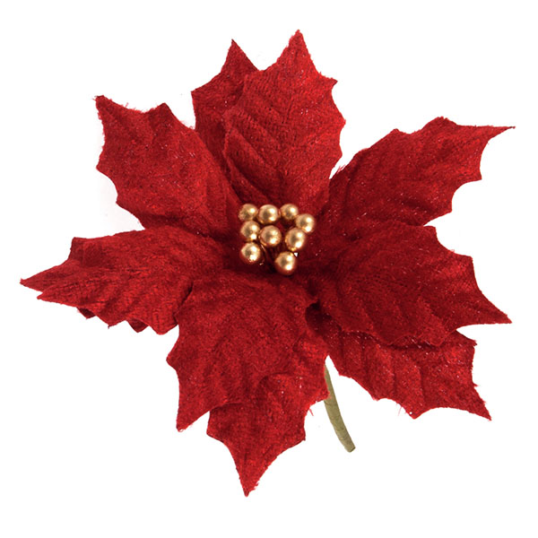 Red_Poinsettia_Pick