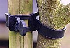 Rubber-Tree-Tie.jpg