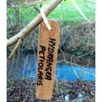 Teak Hanging Tag - Wooden