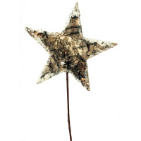 Birch Star Pick