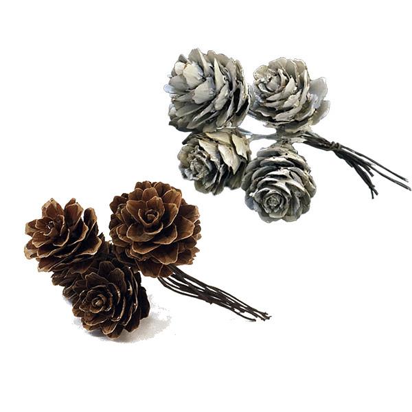 Min Pine Cone Picks