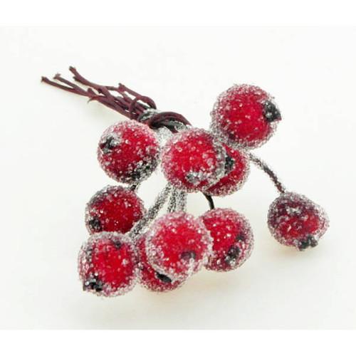 Beaded-berry-pick-cranberry