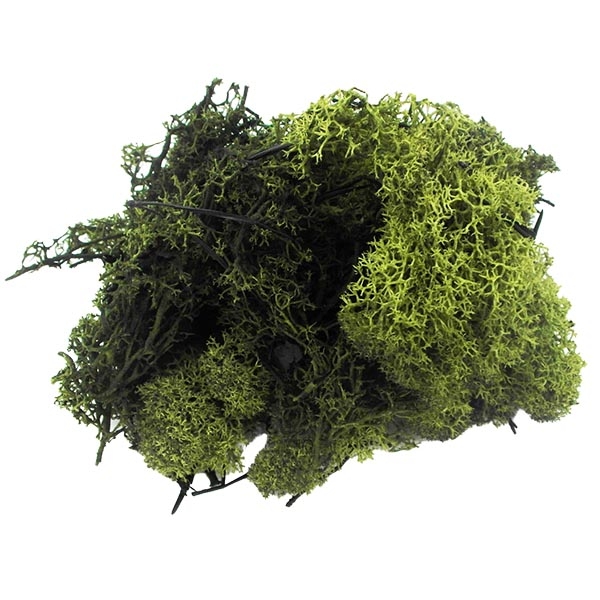 Dark-Green-Finland-Moss