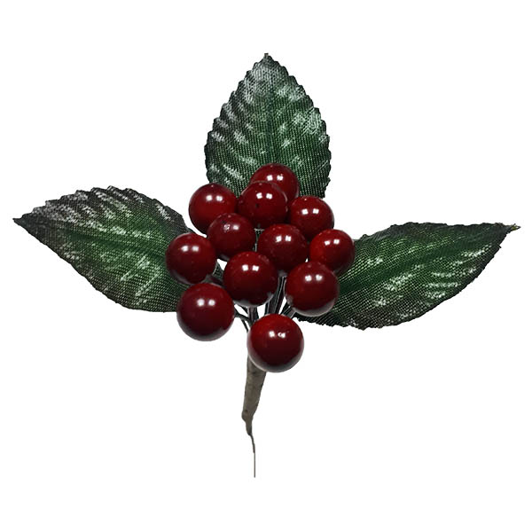 Red-berry-pick-with-leaves