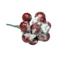 Snow Covered Christmas Berry Pick