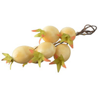 White Rose Hip Christmas Pick