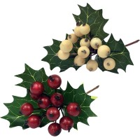 Ilex berry pick - Holly leaves and berries
