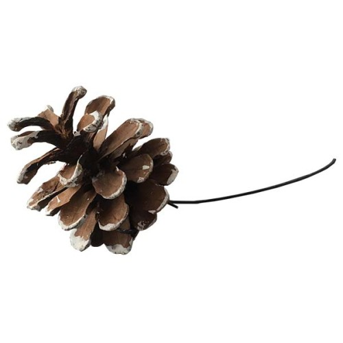 Pine COne on a wire - snow effect