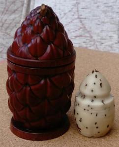 Thikka Pod & Seed
