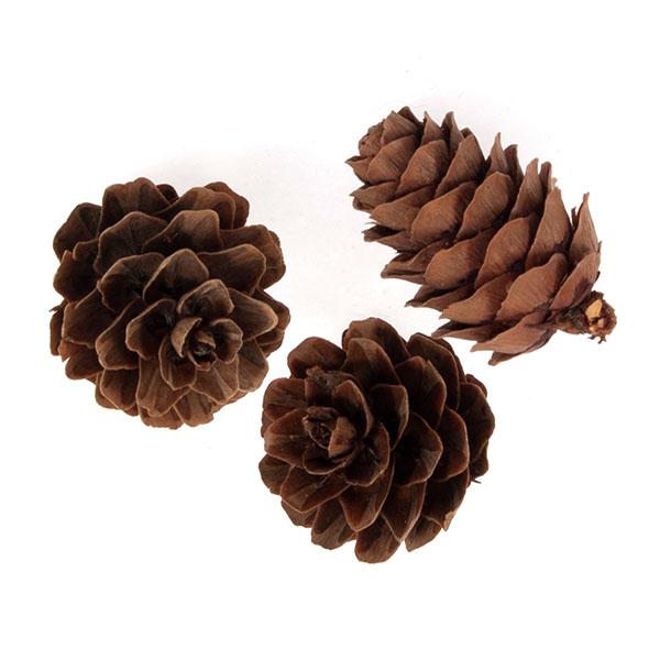 small_cones