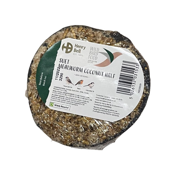Suet & Mealworm Bird Feeder