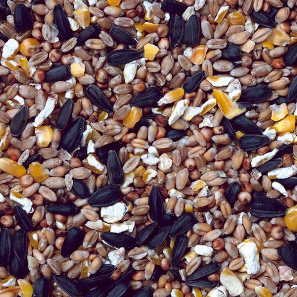 Superior Bird Seed